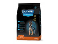 Olympic large breed puppy 2kg